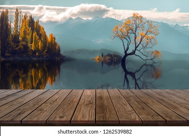 Wood display shelf on Reflection lone Tree in Lake  Wanaka Background,New Zealand