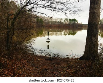 A wood duck box stands alone over the placid surface of a pond, with crystal clear mirror like reflections of trees and the birdhouse.