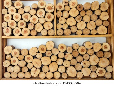 Wood face cut texture pattern background. Natural Eucalyptus old wooden decorate  of tree light brown round stumps on wall,Round teak wood stump background can use as wallpaper.Selective focus.