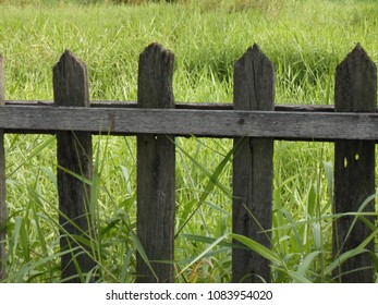 wood fence in front of green grasss