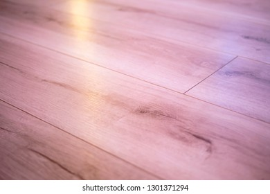 Wood floor, interior, close up
