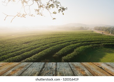 wood floor on tea farm in the morning