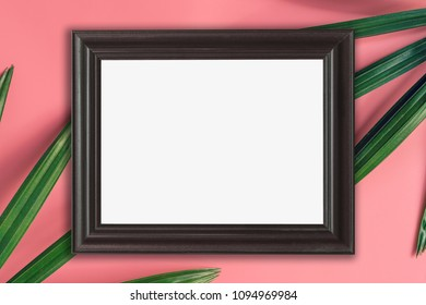 wood frame and green leaf on pink pastel color background. tropical background.