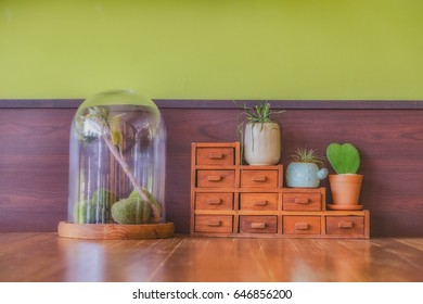Wood Furniture with small Drawer and Cactus in pot displayed at green wall in coffee shop