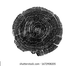 Wood growth rings stamp on a white background. Black and white felled tree trunk with detailed texture.