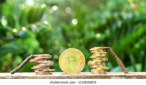 Wood helped coin and Bitcoin gold coin on wooden table with natural background, Money of the future