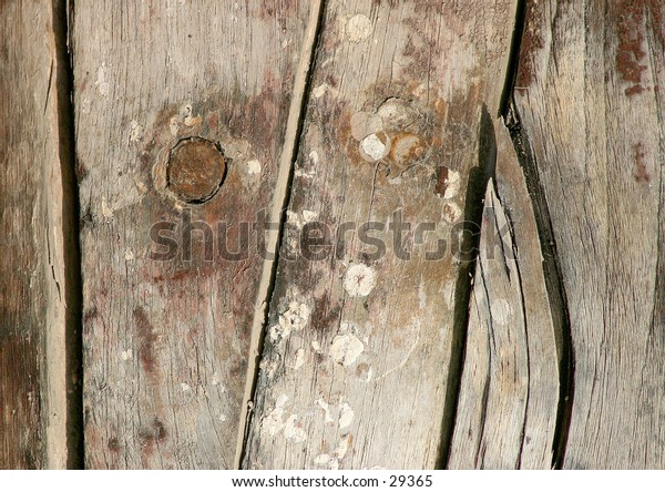 Wood from the hull of a fishing vessel, showing marks and encrusations from sea life.