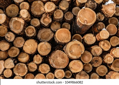 Wood, industry, material, log, wood pattern