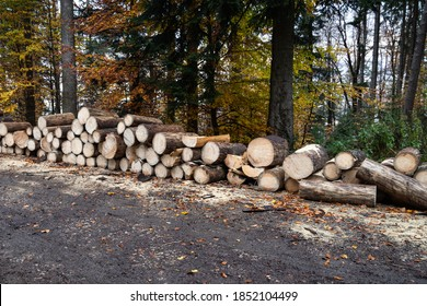 Wood industry, Stacked logs, Black Forest, Germany, Europe. Deforested woodland. Schwartzwald. Tree trunks are irrigated in a wet storage area