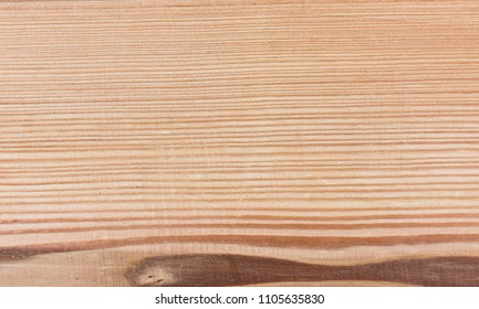 wood - Larch tree - natural wooden texture