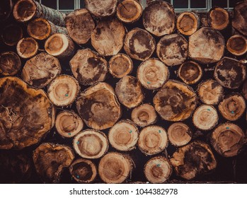 wood log ends, wooden cut, wooden end, logs, timber