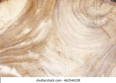 wood log top view