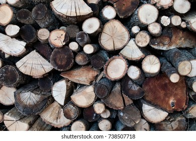 wood logs cut with the visible grain. Wood for winter with different types of wood