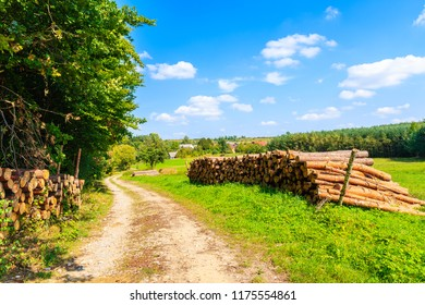 Wood logs on side of rural road and green meadow on sunny summer day near Olkusz town, Poland