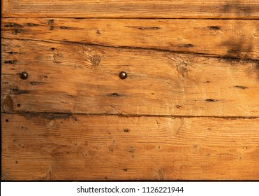 Wood oak texture