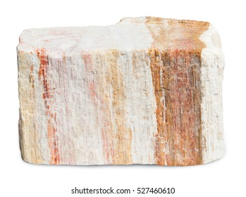 Wood opal isolated on white with clipping path