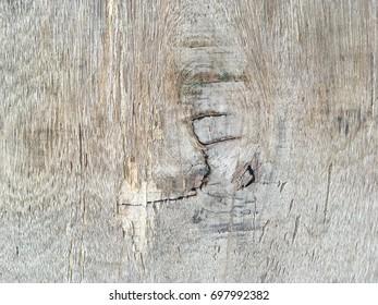 Wood organic wall texture floor background