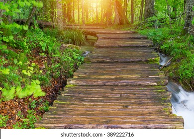 Wood path in the Plitvice national park in Croatia