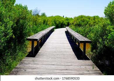 wood pathway and wooden bench in park in La Teste-de-Buch in southwest france