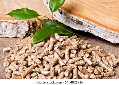Wood pellets, birch and twig with leaves. Biomass Pellets- cheap energy. The concept of biofuel production