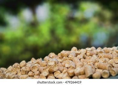 Wood pellets on a green background. Biofuels.