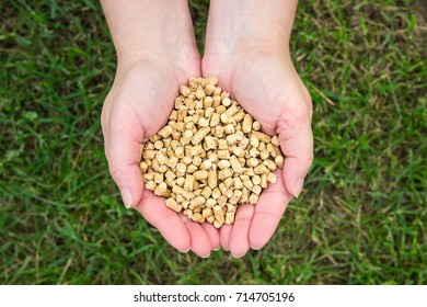 Wood pellets on green grass background in woman hands. Biofuels. Cat litter. Natural material