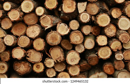 Wood pile reserve for the winter. Pile of chopped firewood. Background texture wood. Wood chips.