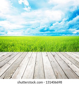 Wood plank on natural green grass field & sky background - can use for display or montage your products