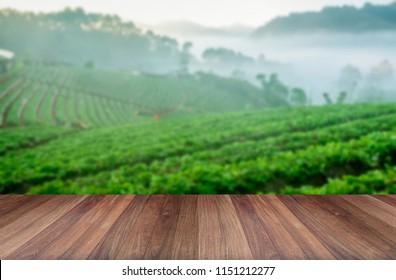 Wood platform beside tea plantation in morning view