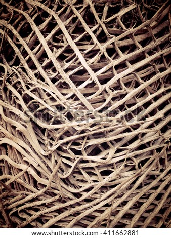 Dried twigs and branches striped wood texture pattern background wallpaper. - Image