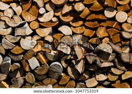 Getting Woodpile Ready For Winter >> Wood Ready Winter Heating Season Heating Stock Photo Edit Now