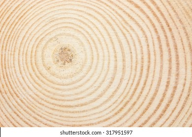 Wood ring texture