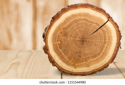 Wood round slice on desk