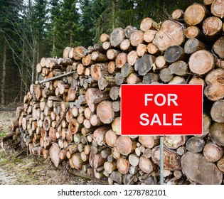 Wood for sale - Conceptual image of wood logs for sale