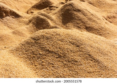 a lot of wood sawdust, carpentry waste, a lot of sawdust, combustible waste, sawdust dump, mulching.