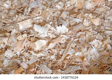 Wood shavings background, sawdust texture