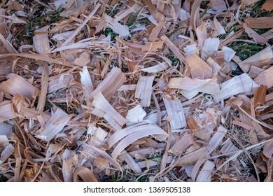 wood shavings texture