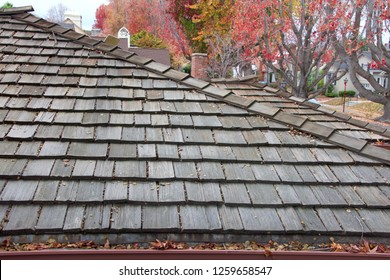 Wood shingle roof on house, rain gutters clogged with leaves, sticks and debris from trees.  Increased risk of rusting, increased need for maintenance and is a potential fire hazard.