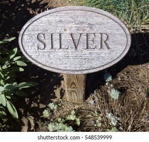Wood sign engraved with lettering marking silver foliage (no, not the ore) growing in a flower garden