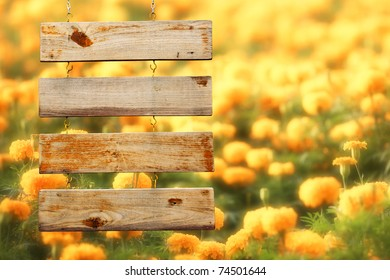 Wood Sign With Yellow Flowers Background