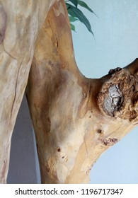 Wood skin abstrak
