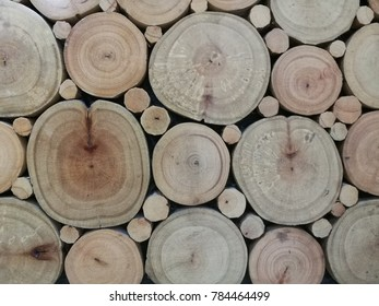 Wood slices with annual rings.