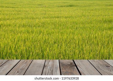 Wood space over green field.
