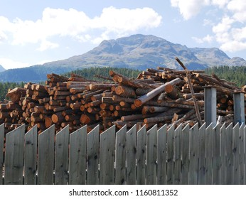 Wood stacks ready to make furniture with motagnes in the background