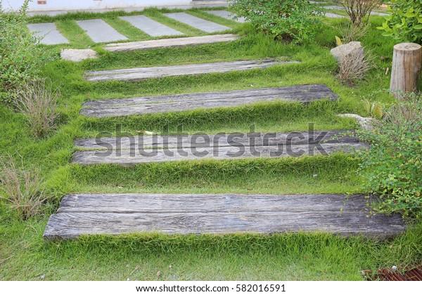 Wood stair way on green garden outdoor