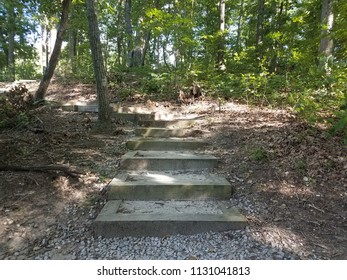 wood steps in the forest with rocks