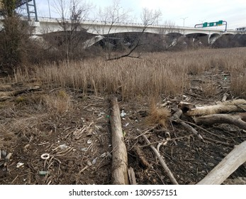 wood and sticks and branches and garbage or trash and the Wilson bridge in Virginia