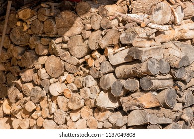 wood stored for winter