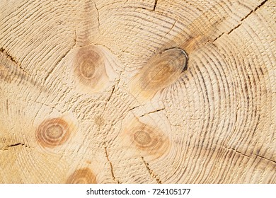 Wood structure background. Lumber industrial wood texture, timber butts background. Butt end of a processed wooden beam. Glued beams