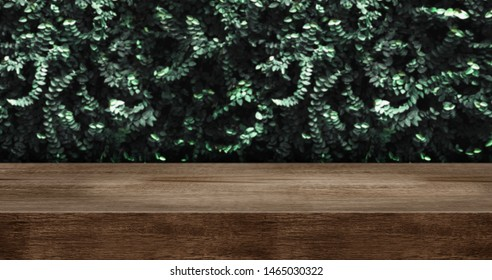 wood table with green leaf wall studio background.dark brown wooden countertop for product display design content.panoramic banner for advertise product on website.ecology concept.3d rendering